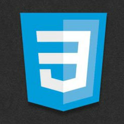 Shake Effect with CSS3